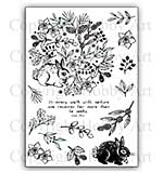 SO: Hobby Art Stamp Set - A walk with Nature