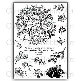 Hobby Art Stamp Set - A walk with Nature