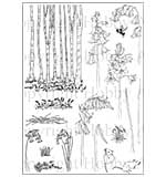 Hobby Art Clear Stamp Set - Janie's Collection - Bluebells