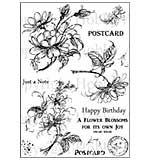 Hobby Art Clear Stamp Set - Jean's Flowers