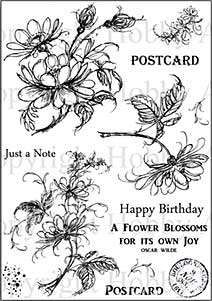 Hobby Art Clear Stamp Set - Jean\'s Flowers
