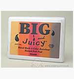 SO: Big n Juicy Brayering  Ink Pad - Foliage [D]