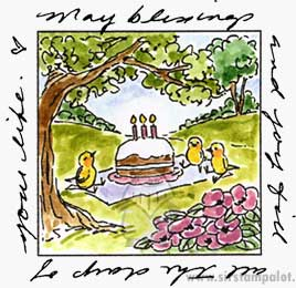 Birthday Picnic Window
