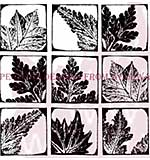 Nine Leaf Prints - Woodware Clear Magic Stamps