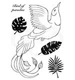 Paradise Bird, Woodware Clear Singles Stamp [1019]