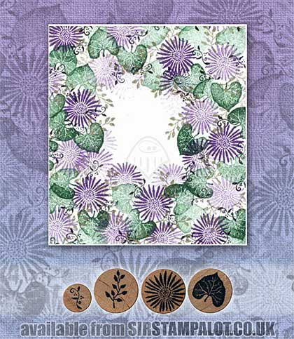 SO: Rubber Stamp Tapestry - African Daisy Border Set