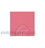 SO: Bazzill 12x12 Grasscloth Texture - Arroyo 25 sheets pack
