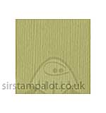 SO: Bazzill 12x12 Grasscloth Texture - Witch Hazel 25 sheets pack