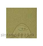 SO: Bazzill 12x12 Grasscloth Texture - Quick Sand