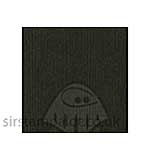 Bazzill 12x12 Grasscloth Texture - London Fog