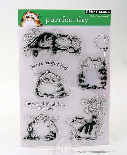 T for Transparent - Purrfect Day