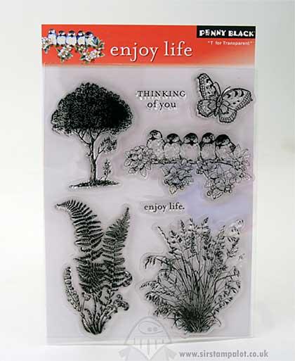 T for Transparent - Enjoy Life