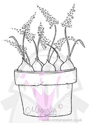 Magnolia EZ Mount - Pot with Spring Onions