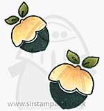 Magnolia Sweet Christmas - Sweet Acorns (2)