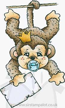Princes and Princesses - Sally the monkey [Y0096J]