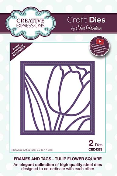 Frames and Tags Collection Tulip Flower Square