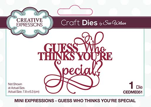 Creative Expressions Sue Wilson Mini Expressions Guess Who Thinks You\'re Special Craft Die [SW2001]