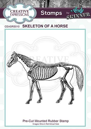Rubber Stamp - Skeleton of a Horse by Andy Skinner