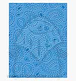 SO: Singlz Embossing Folder - Paisleys [L]