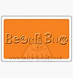 Singlz Embossing Folder - Beach Bum word [M]