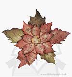Tim Holtz Alterations Bigz Die - Tattered Poinsettia