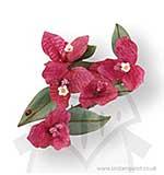 Susans Garden Thinlits Die Set 9PK - Flower, Bougainvillea