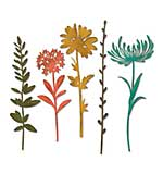 Sizzix Thinlits Die Set - Wildflower Stems #1 by Tim Holtz (5pk)