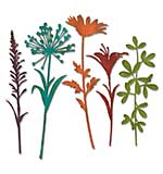 Sizzix Thinlits Die Set - Wildflower Stems #2 by Tim Holtz (5pk)