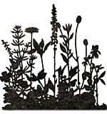 Sizzix Thinlits Die By Tim Holtz - Flower Field