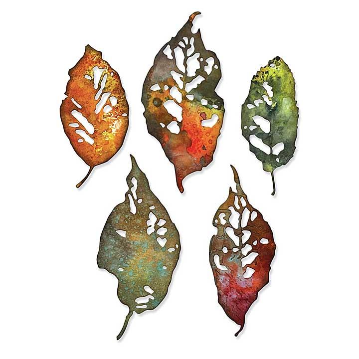 Sizzix Thinlits Dies By Tim Holtz 5pk - Leaf Fragments