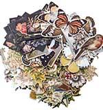 SO: Idea-Ology Layers Die-Cuts - Botanical (83pk)