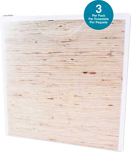Storage Studios Paper Files with Tabbed Dividers and Labels 3pk (12.75x13)