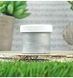 Lawn Fawndamentals - Silver (Stencil Paste 2oz)