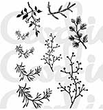 SO: Card-io - Branching Out Clear Stamp Set