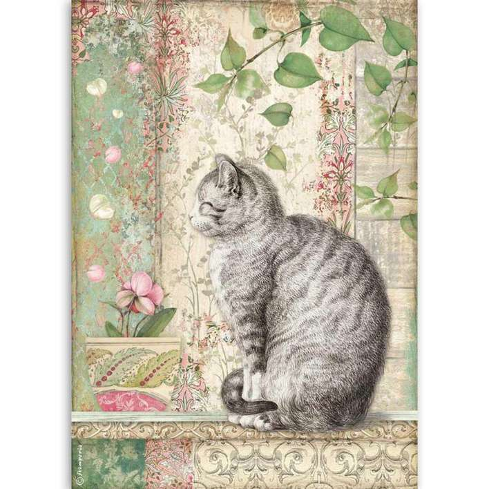 Stamperia A4 Rice Paper Cat