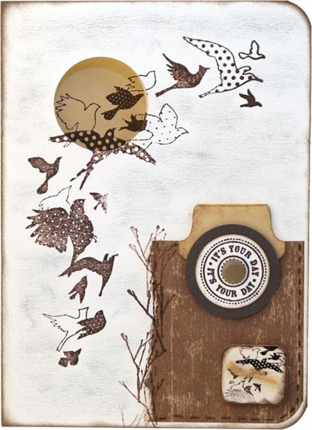 Birds Galore by Louise Molesworth