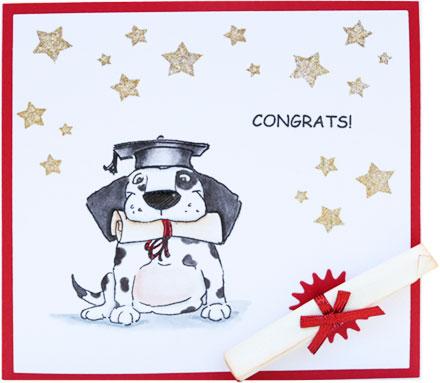 Congrats Dog by Sara Rosamond